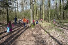 Den Země - čištění lesa